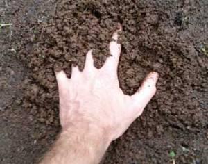 Mud Hand
