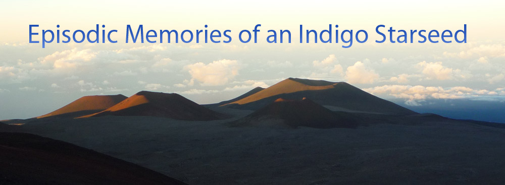 Episodic Memories of an Indigo Starseed